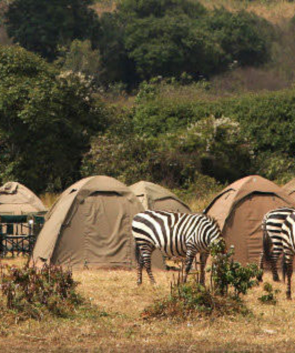 14_days_Highlights_of_Tanzania_Camping_Safari_and_Zanzibar